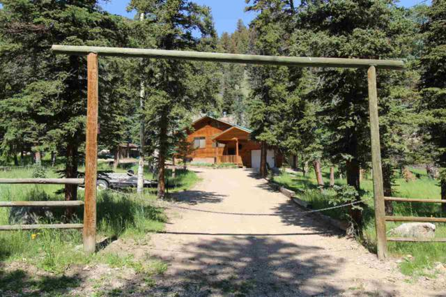 45 Monte Vista Rd, Red River, NM 87558 (MLS #103831) :: Angel Fire Real Estate & Land Co.