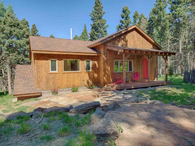 13 High Needle Overlook, Angel Fire, NM 87710 (MLS #103834) :: Page Sullivan Group | Coldwell Banker Mountain Properties