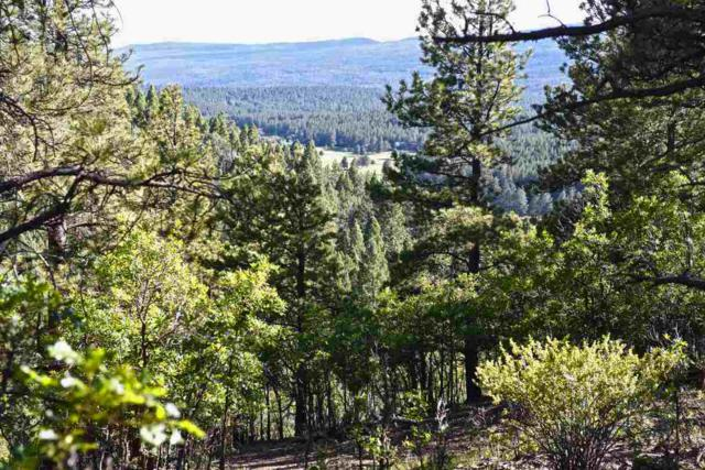 Lot 173 A Vail Overlook, Angel Fire, NM 87710 (MLS #103838) :: Page Sullivan Group | Coldwell Banker Mountain Properties