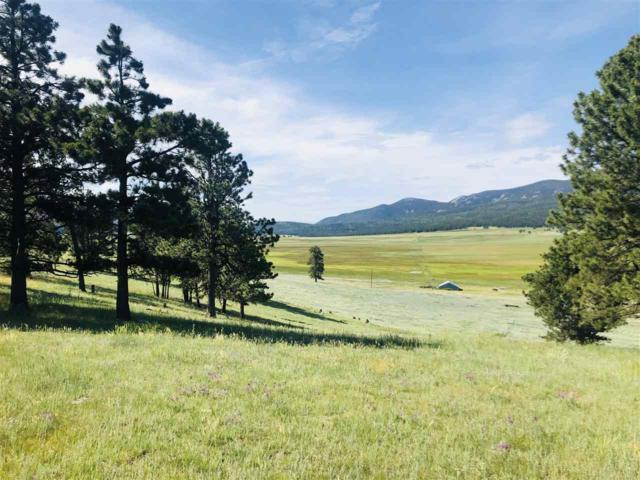Lot 4 Garcia Park Rd, Angel Fire, NM 87710 (MLS #103848) :: The Chisum Realty Group