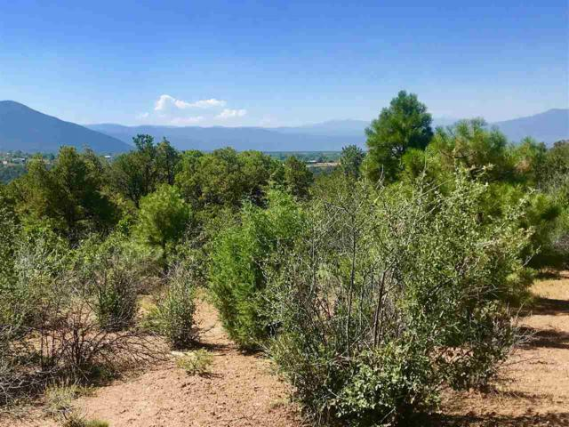 Canada Del Agua, Valdez, NM 87580 (MLS #103859) :: Page Sullivan Group | Coldwell Banker Mountain Properties