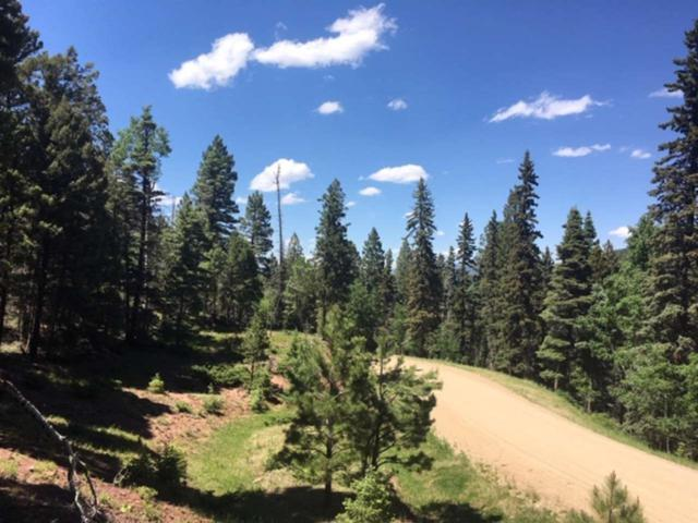 Lot 240 Snowbird Lane, Angel Fire, NM 87710 (MLS #103863) :: Angel Fire Real Estate & Land Co.