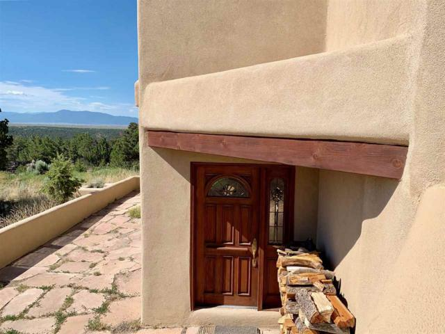 100 Lobo Ranch Rd, Arroyo Hondo, NM 87513 (MLS #103890) :: Page Sullivan Group | Coldwell Banker Mountain Properties