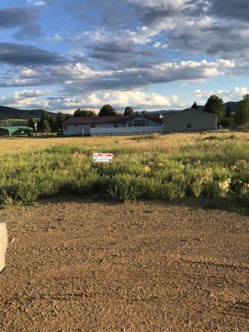 5 Indian Paintbrush, Eagle Nest, NM 87718 (MLS #103905) :: The Chisum Realty Group