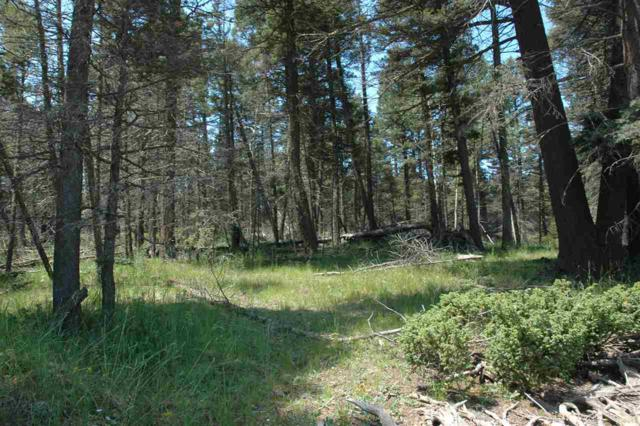 269 Back Basin Rd, Angel Fire, NM 87710 (MLS #103912) :: Page Sullivan Group | Coldwell Banker Mountain Properties