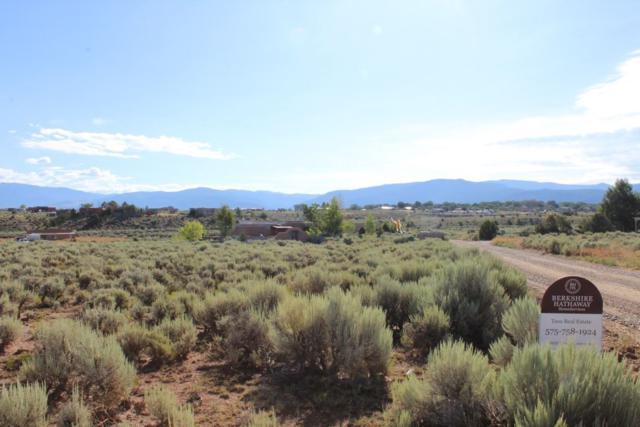 Camino De Los Arroyos, Ranchos de Taos, NM 87557 (MLS #103915) :: Page Sullivan Group | Coldwell Banker Mountain Properties