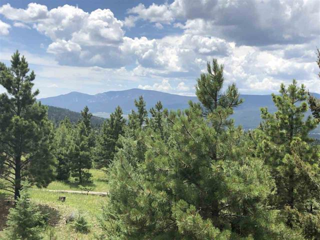 131 Beaver Loop, Angel Fire, NM 87710 (MLS #103918) :: Page Sullivan Group