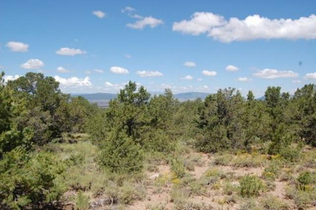 C2 N Half  Camino Del Medio, San Cristobal, NM 87564 (MLS #103941) :: Page Sullivan Group | Coldwell Banker Mountain Properties