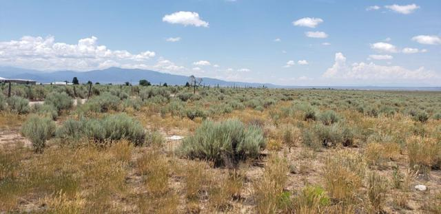 40 Acres Buggy Road, Taos, NM 87571 (MLS #103949) :: The Chisum Realty Group