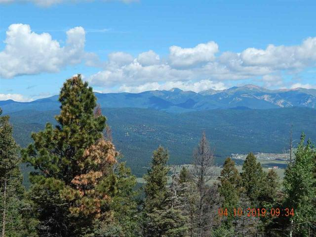 316 South Vail Overlook, Angel Fire, NM 87710 (MLS #103952) :: The Chisum Realty Group
