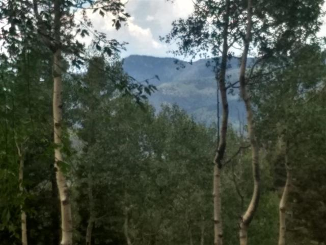 Lot C Bull Of The Woods Rd, Taos Ski Valley, NM 87525 (MLS #103958) :: Angel Fire Real Estate & Land Co.
