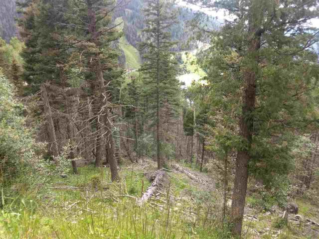 Lot B Bull Of The Woods Rd, Taos Ski Valley, NM 87525 (MLS #103959) :: Angel Fire Real Estate & Land Co.