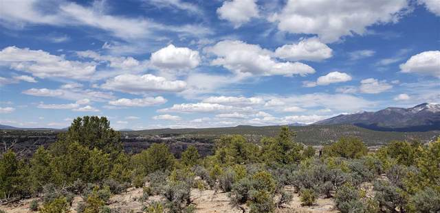 60 Acequia Madre Del Llano Rd Tract B, Arroyo Hondo, NM 87513 (MLS #103982) :: Page Sullivan Group | Coldwell Banker Mountain Properties