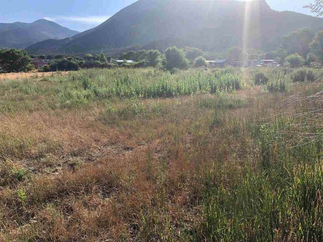 TBD South Kiowa Road, Questa, NM 87558 (MLS #103983) :: Page Sullivan Group | Coldwell Banker Mountain Properties