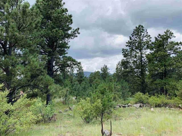 35 Susan Lane, Black Lake, NM 87734 (MLS #103988) :: Angel Fire Real Estate & Land Co.