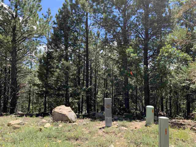 Via Del Rey, Angel Fire, NM 87710 (MLS #103999) :: Page Sullivan Group | Coldwell Banker Mountain Properties