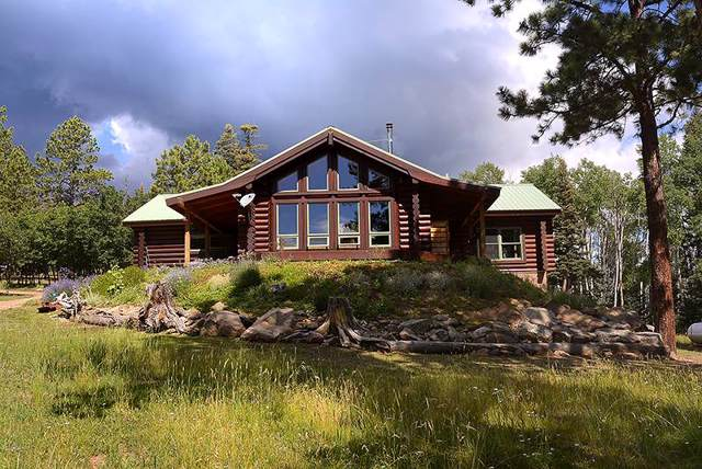 49 Martin Luther King Blvd, Angel Fire, NM 87710 (MLS #104006) :: Chisum Realty Group