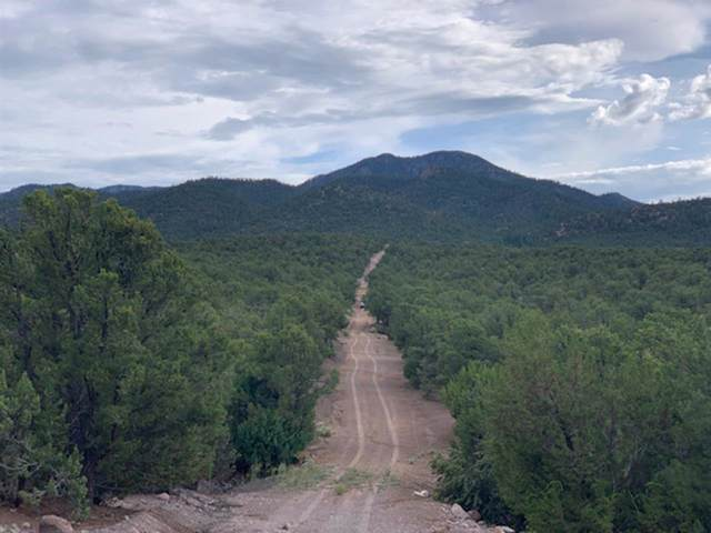 Tract L Miranda Canyon Road, Ranchos de Taos, NM 87557 (MLS #104020) :: Angel Fire Real Estate & Land Co.
