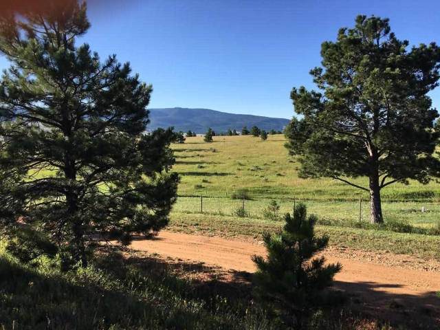 Onate Rd, Angel Fire, NM 87710 (MLS #104023) :: The Chisum Realty Group