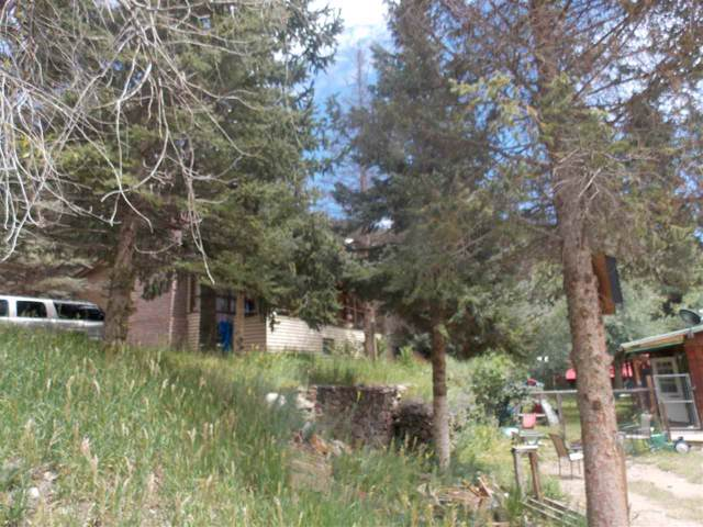 104 Prospector Trl, Red River, NM 87558 (MLS #104025) :: The Chisum Realty Group
