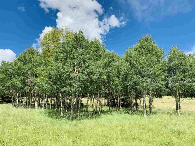 1538A El Camino Real, Angel Fire, NM 87710 (MLS #104027) :: Angel Fire Real Estate & Land Co.