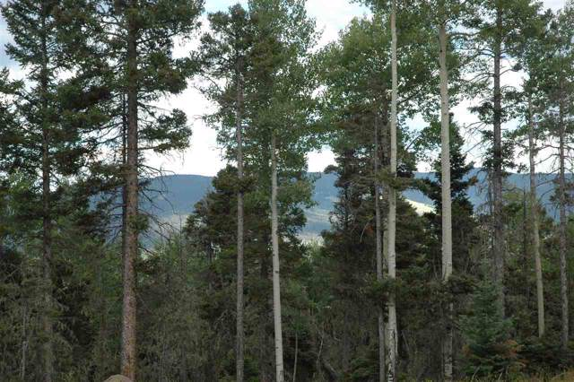 104 Zia Raod, Angel Fire, NM 87710 (MLS #104045) :: The Chisum Realty Group