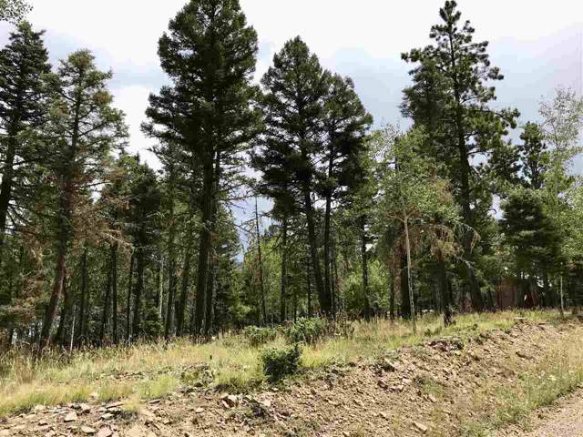 495 Sandia Circle, Angel Fire, NM 87710 (MLS #104049) :: Angel Fire Real Estate & Land Co.
