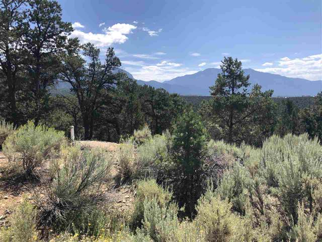 81 Deer Mesa Road, Valdez, NM 87580 (MLS #104050) :: Page Sullivan Group | Coldwell Banker Mountain Properties