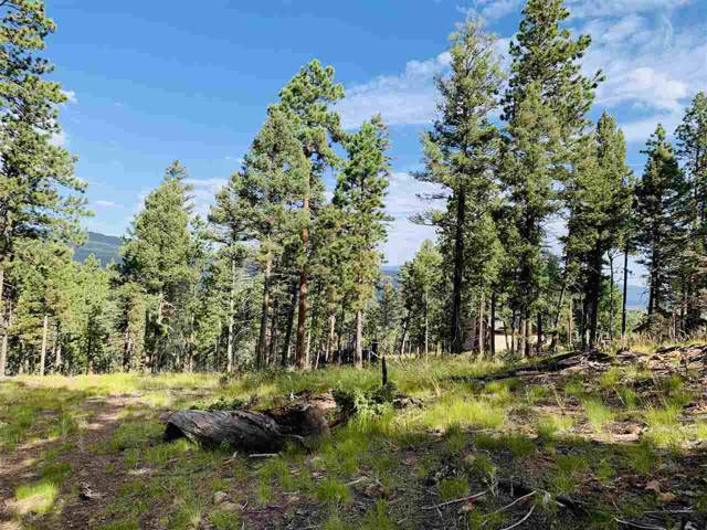 1561 Luna Drive, Angel Fire, NM 87710 (MLS #104057) :: Page Sullivan Group | Coldwell Banker Mountain Properties