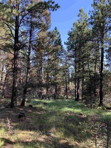 Lot 8 Green Valley, Black Lake, NM 87722 (MLS #104058) :: The Chisum Realty Group