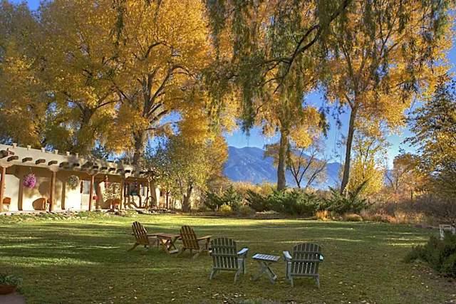 109 Mabel Dodge Lane, Taos, NM 87571 (MLS #104064) :: The Chisum Realty Group