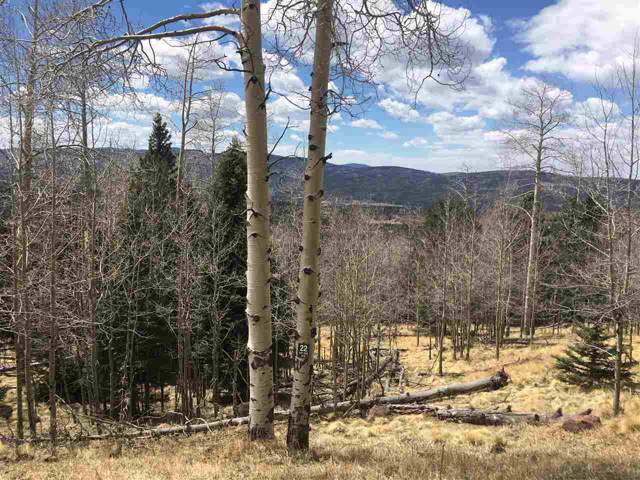 Lot 1617 Sky View Way, Angel Fire, NM 87710 (MLS #104076) :: Page Sullivan Group | Coldwell Banker Mountain Properties