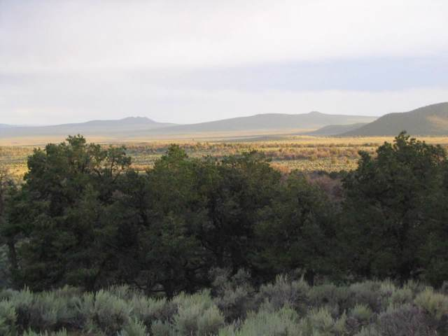 off Camino Del Lovato, El Prado, NM 87529 (MLS #104079) :: The Chisum Realty Group