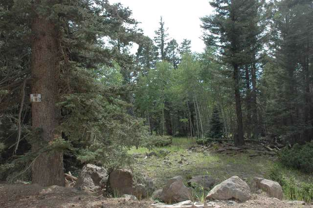 lot 1012 El Camino Real, Angel Fire, NM 87718 (MLS #104088) :: Page Sullivan Group | Coldwell Banker Mountain Properties