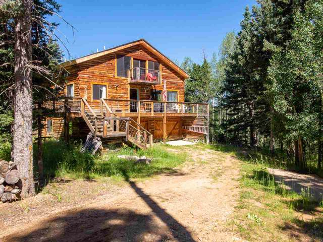 60 Bear Paw Rd, Angel Fire, NM 87710 (MLS #104112) :: Angel Fire Real Estate & Land Co.