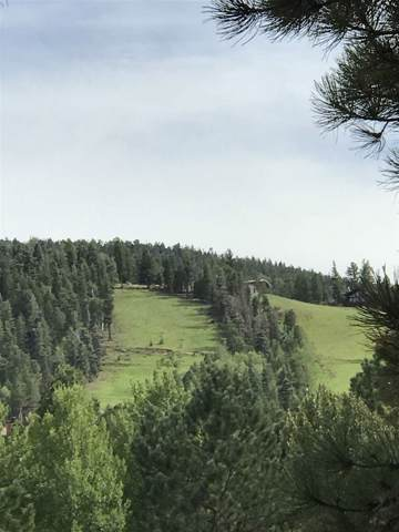 Mammoth Mountain Road, Angel Fire, NM 87710 (MLS #104114) :: Angel Fire Real Estate & Land Co.