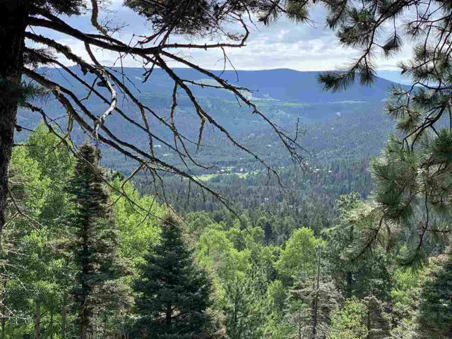 Lot 208 RA Taos Drive, Angel Fire, NM 87710 (MLS #104116) :: Page Sullivan Group | Coldwell Banker Mountain Properties