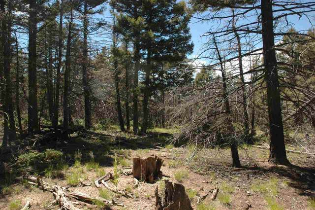 311 South Vail Overlook, Angel Fire, NM 87710 (MLS #104124) :: Page Sullivan Group | Coldwell Banker Mountain Properties
