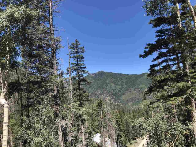 Kachina Road, Taos Ski Valley, NM 87525 (MLS #104141) :: Angel Fire Real Estate & Land Co.