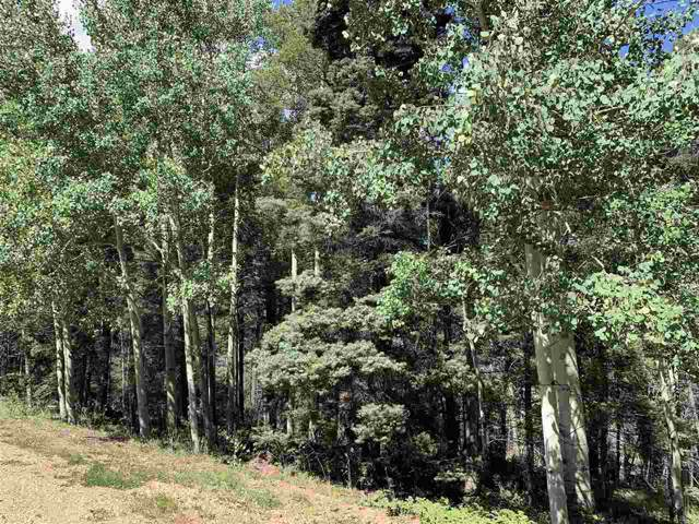 Back Basin Rd, Angel Fire, NM 87710 (MLS #104156) :: Angel Fire Real Estate & Land Co.
