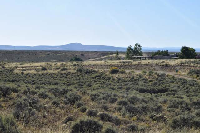 Tr A2 Blueberry Hill, El Praod, NM 87529 (MLS #104181) :: Page Sullivan Group | Coldwell Banker Mountain Properties