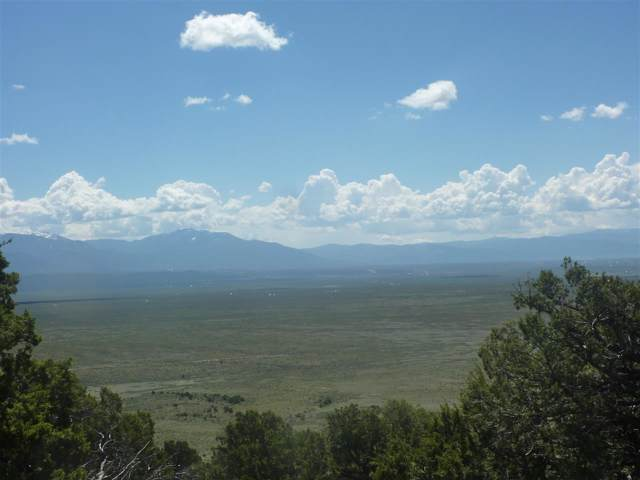 23205 Us 64, Tres Piedras, NM 87529 (MLS #104183) :: The Chisum Realty Group