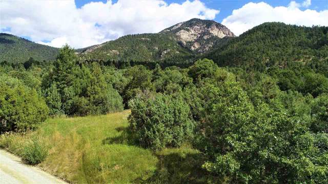 Arroyo Seco, NM 87575 :: Angel Fire Real Estate & Land Co.