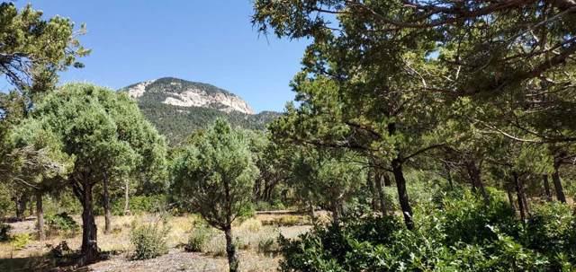 Tract B Walking Rain Road, Arroyo Seco, NM 87514 (MLS #104194) :: Angel Fire Real Estate & Land Co.
