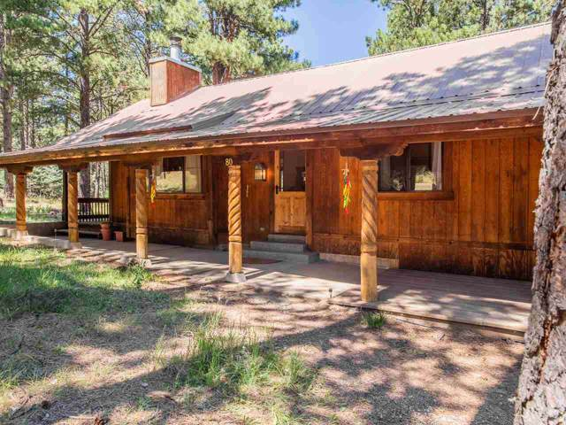 80 N Valle Grande Trail, Angel Fire, NM 87710 (MLS #104195) :: Page Sullivan Group | Coldwell Banker Mountain Properties