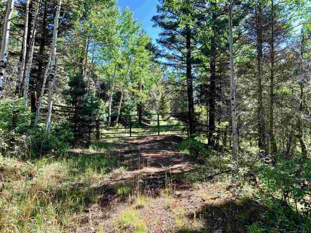 LOT 152 Brazos Drive, Angel Fire, NM 87710 (MLS #104198) :: The Chisum Realty Group