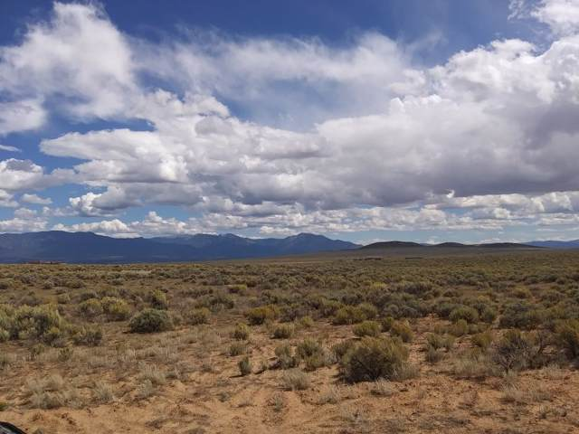 14A Coyote Moon, El Prado, NM 87529 (MLS #104215) :: Angel Fire Real Estate & Land Co.