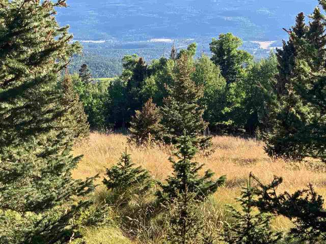 Lot 1263 Starlight Overlook, Angel Fire, NM 87710 (MLS #104221) :: Page Sullivan Group | Coldwell Banker Mountain Properties