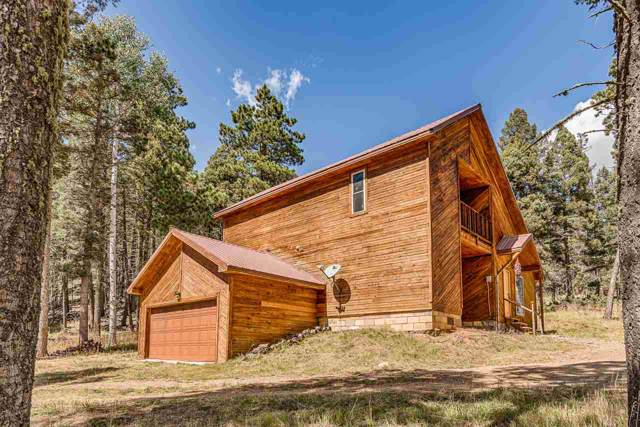 62 Santo Domingo Trail, Angel Fire, NM 87710 (MLS #104223) :: Page Sullivan Group | Coldwell Banker Mountain Properties