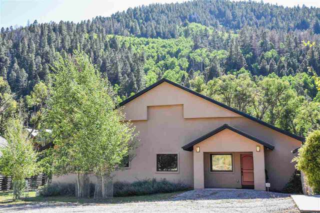 1521 Youngs Ranch Road, Red River, NM 87558 (MLS #104247) :: Page Sullivan Group | Coldwell Banker Mountain Properties